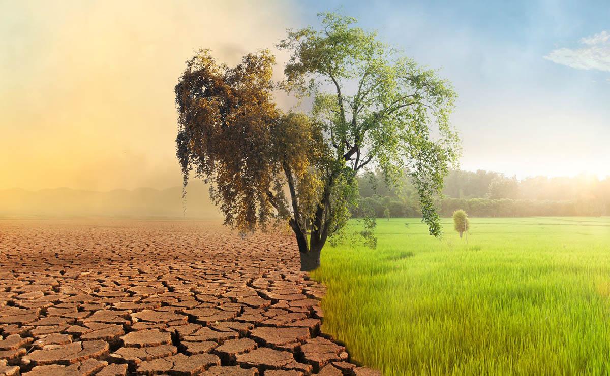 ley contra el cambio climático.