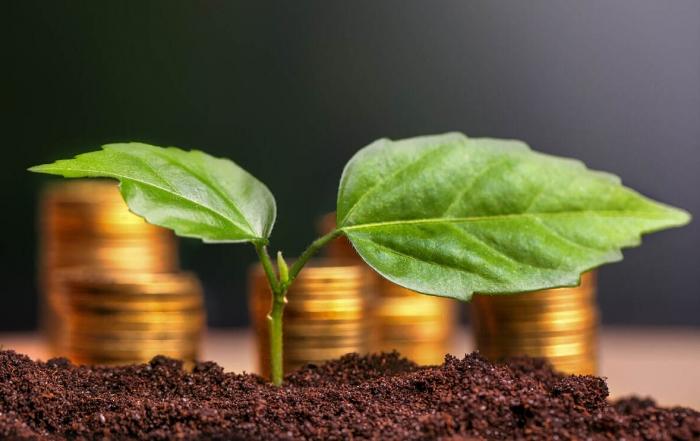 sector financiero sostenible